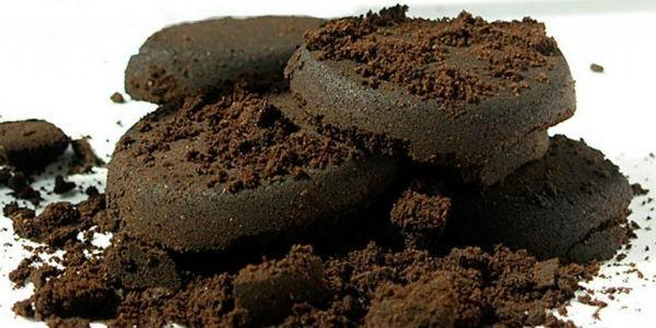 субстрат из кофейной гущи для выращивания вешенки