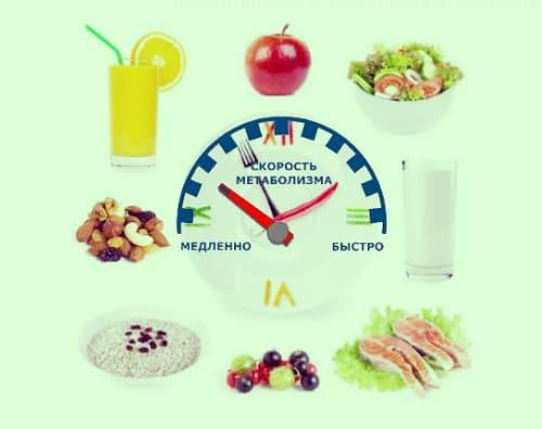 Какой бывает метаболизм