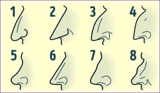 форма носа